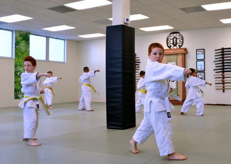 Two boys practicing karate kata