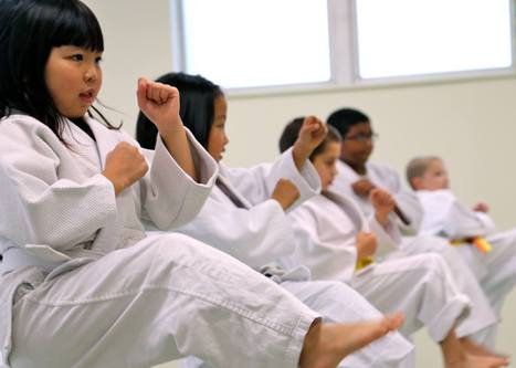 Kids Karate (Ann Arbor)