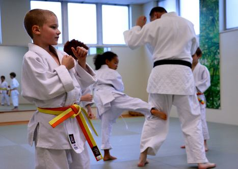 Ann Arbor Kids Karate