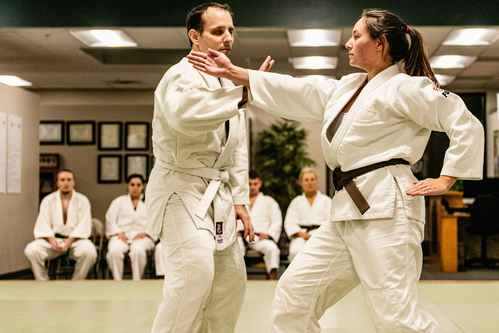 Martial Arts in Ann Arbor - Judo at JMAC